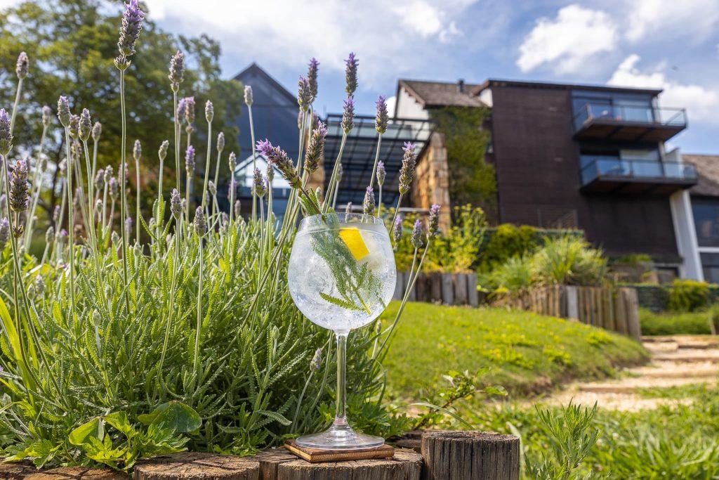Gin tem lugar de destaque na nova carta do Botanique