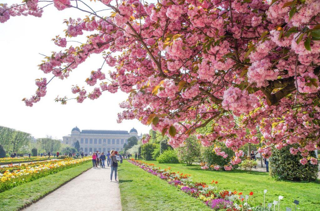 Primavera em Paris inspiração